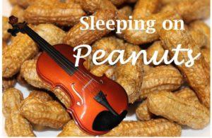 Peanuts illus 2